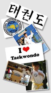 ITF Program - Taekwondo