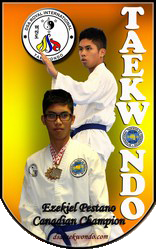 DSA Royal International Taekwon-do